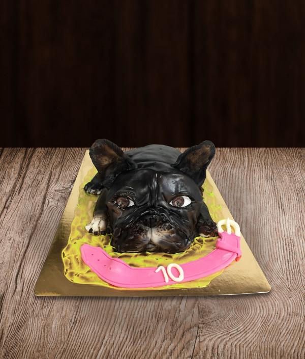 Tortas šuo
